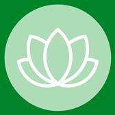 Psyche Icon